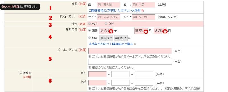 MSV LIFE(マネラップ)への登録方法6